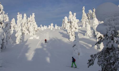 Горные лыжи в Финляндии