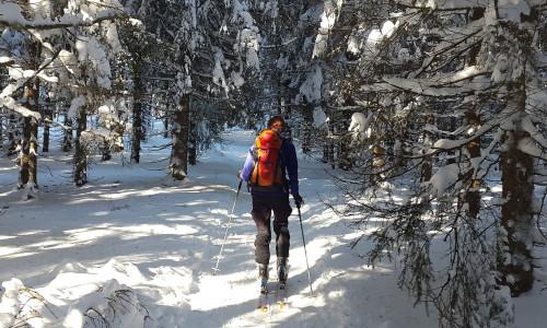 Ски-тур в Австрии