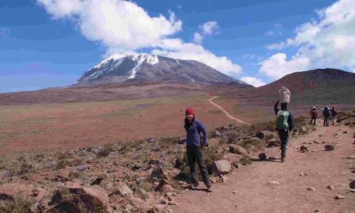 Восхождение на Килиманджаро (6 дней): маршрут Марангу